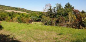 Prodej pozemku 4 477 m2 , Třebenice Litoměřice